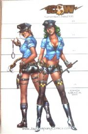 Tomb Raider #16 Busty Cops Gold Foil Jay Company Variant comic book COA